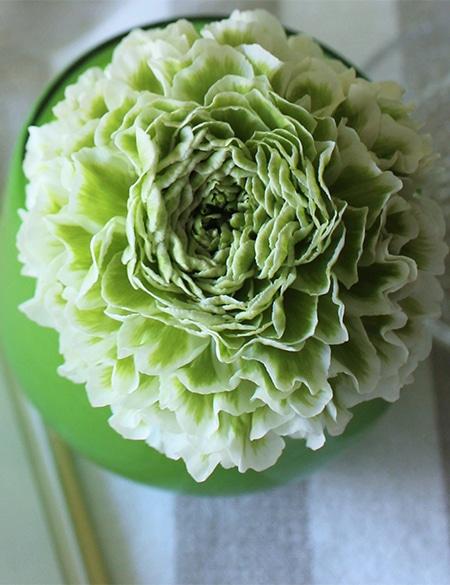 05-weekendflower-170316.jpg
