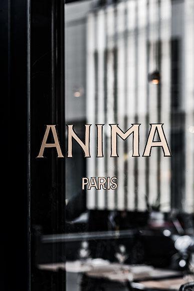 180205-anima-01.jpg