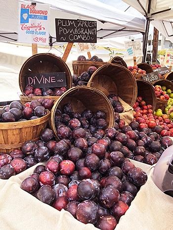farmarsmarket_3.jpg