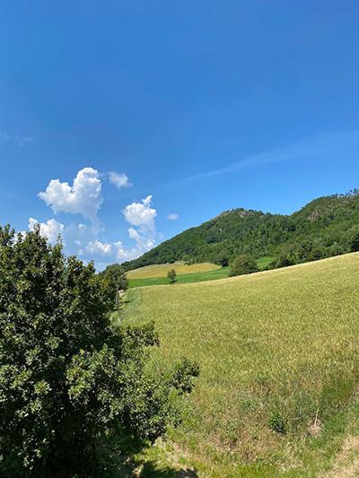 200612-1_nuvola.jpg