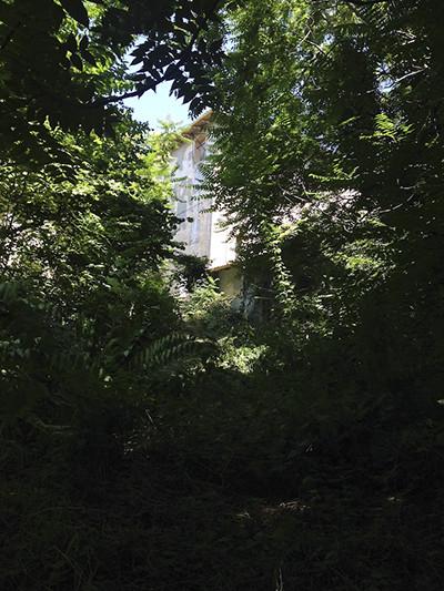 200821_11.attorno casa2.jpg