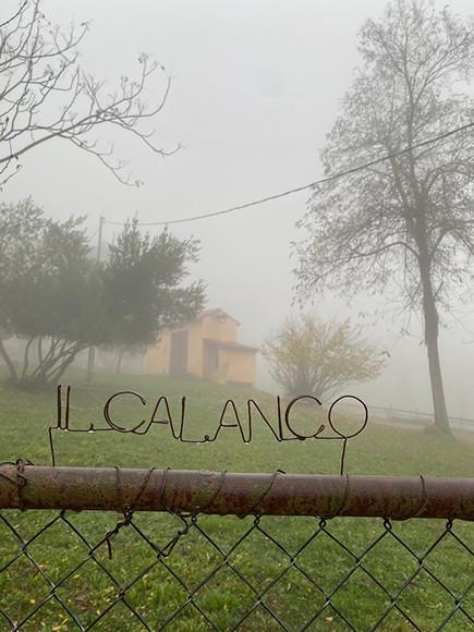 201127_1.calanco.jpg