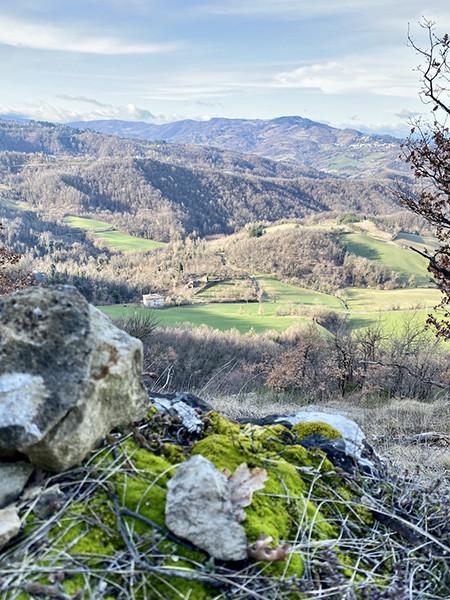 210302_31.panorama.jpg