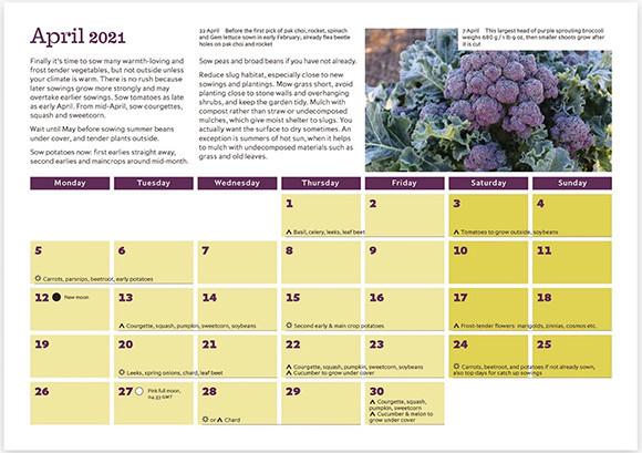 210427_9_no dig calendar.jpg