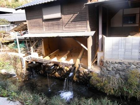 hirosawa110113_a.jpg