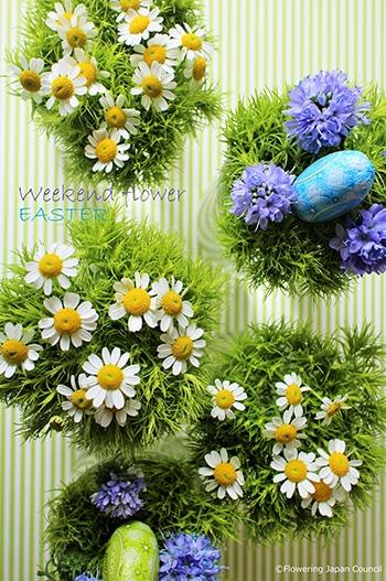 c02-weekendflower-150324.jpg