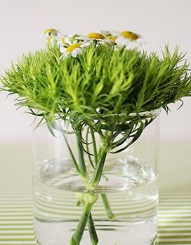 c05-weekendflower-150324.jpg