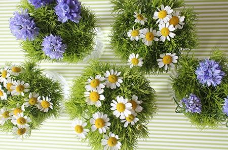 c07-weekendflower-150324.jpg