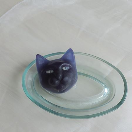 200217_cat_01.jpg