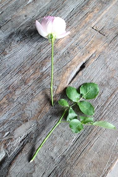 05-weekendflower-161117.jpg