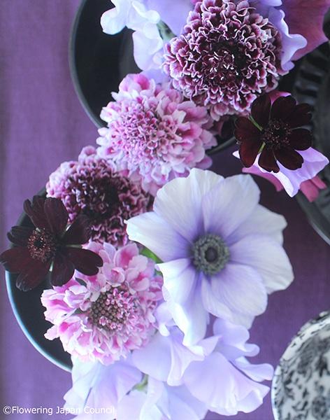 170223-weekendflower-02.jpg