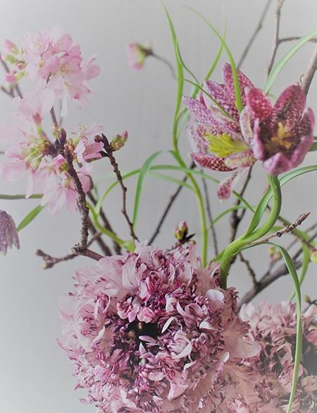 170317_flower_00.jpg