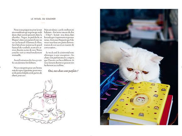 171016-mon-catbook-04.jpg