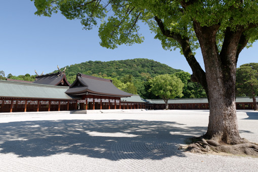 180622-kashihara-thmub.jpg