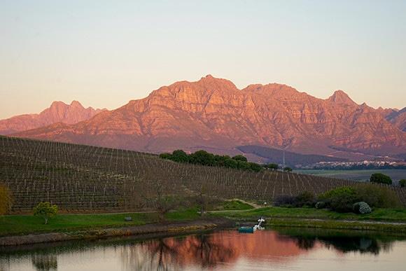 181213_south_african_wines_08.jpg