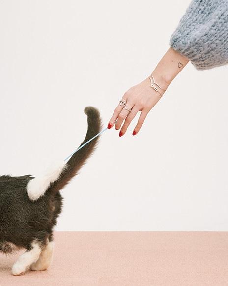 190202-jewelry-cat-03.jpg