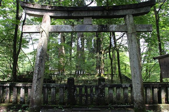 200206-kaiuntabi4-02.jpg
