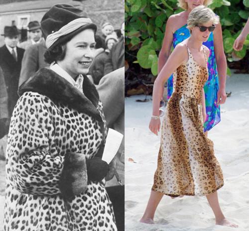 200219-limprime-leopard-prise-par-les-membres-de-la-famille-royale.jpg