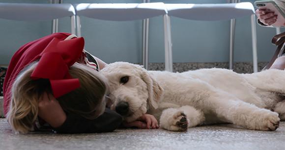 200417-Dogs_S01E01_24m12s34815f.jpg