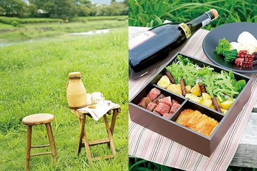 thumb-06-picnic-190122.jpg