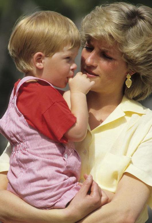 再les-plus-beaux-hommages-des-princes-harry-et-william-a-lady-diana-photo-4.jpg
