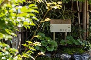 kyoto-160813-MARUYAMA_0029data.jpg